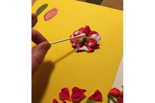 Using cotton swab to press down flowers onto the page