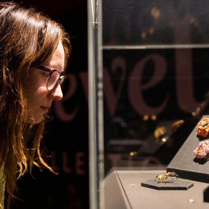 woman in gem vault