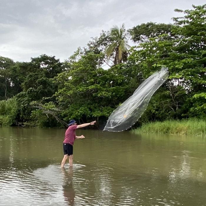 Netting specimens in Costa Rica