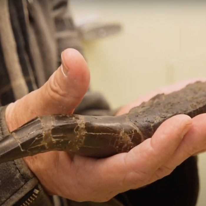 Crash McCreery holding dinosaur fossil