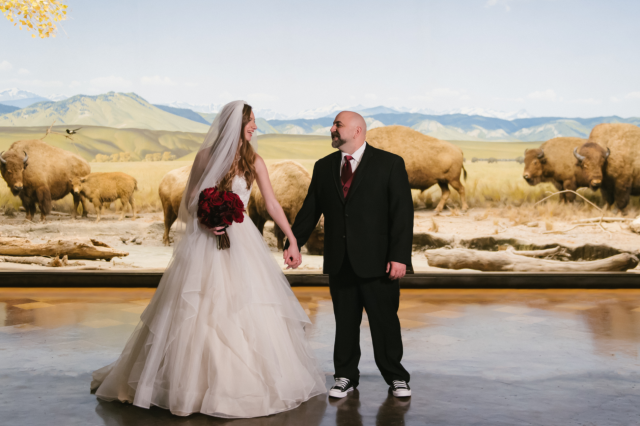 Bride and groom pose in front of the bison in the North American Mammal Hall
