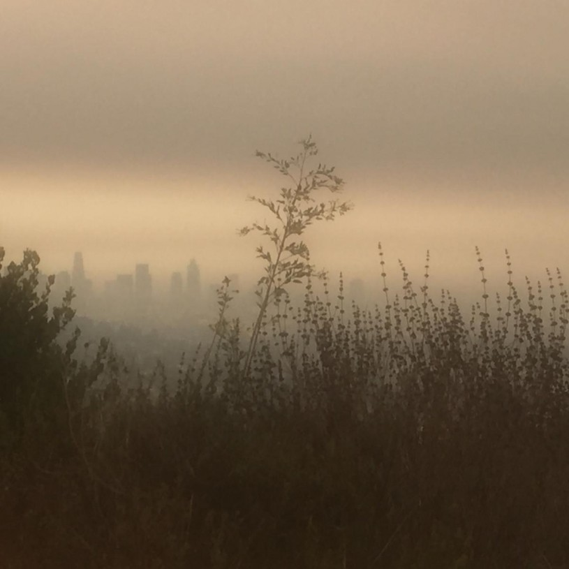 Firehaze: View of Downtown Los Angeles from Griffith Park through the smoke.