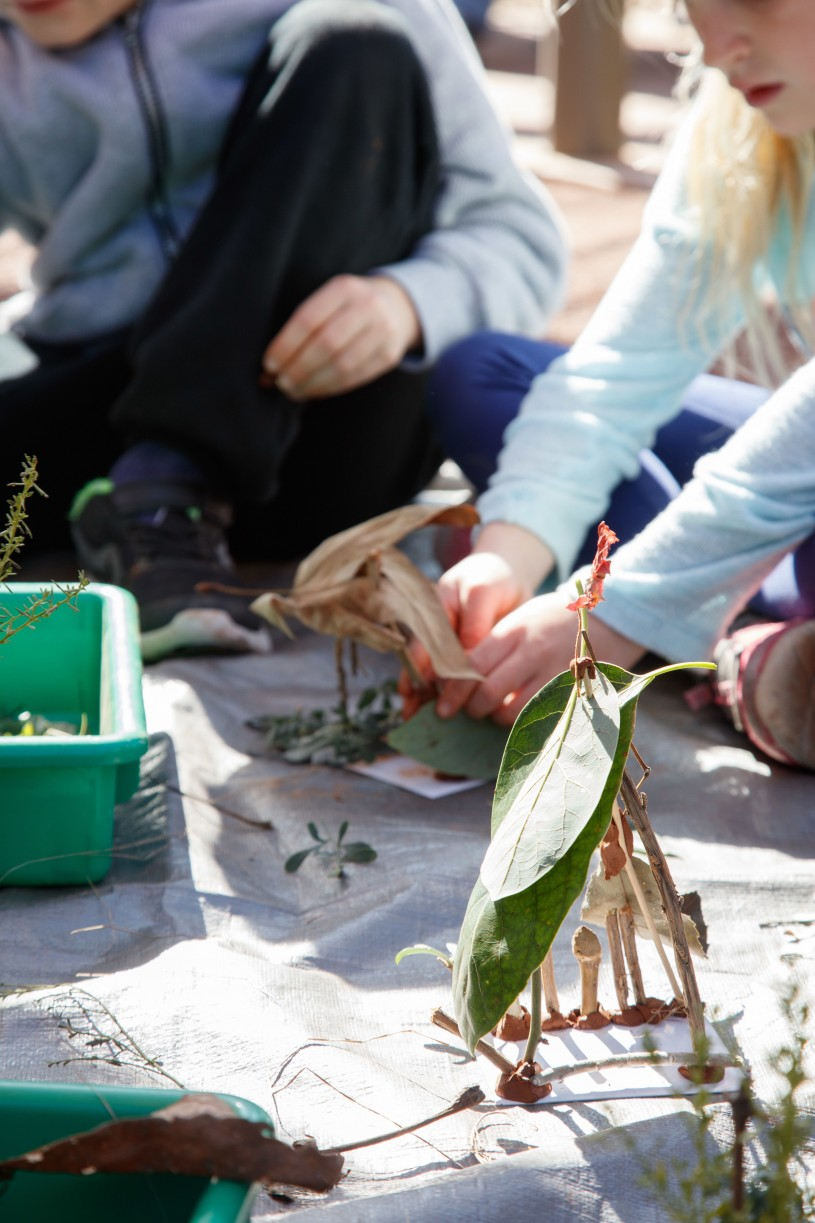 Student is using clay and sticks to create home for bugs