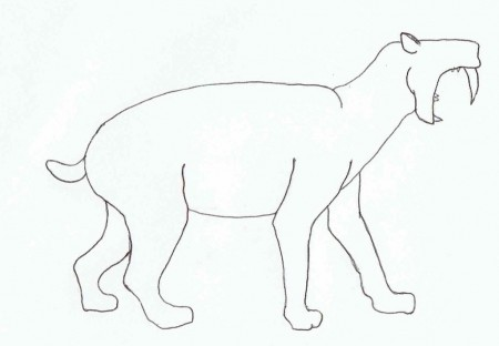 Outline of sabertoothed cat in profile