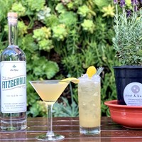 Foto de cóctel botanico: Collins de verano con lavanda-miel