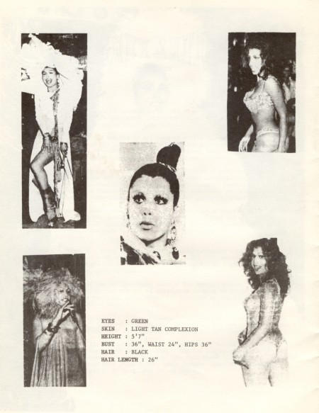 """brochure titled """"Who is Sir Lady Java?"""" featuring four photos of Java performing, one headshot of Java, and information about Java's physical appearance."""